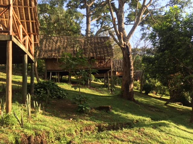 Karama Lodge Arusha Tanzania