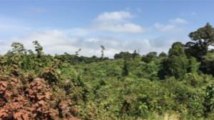 Saliendo de Ngorongoro