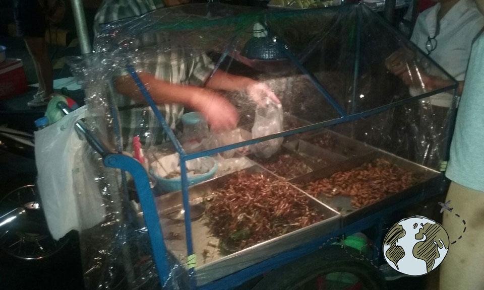 puesto de insectos en el mercado nocturno